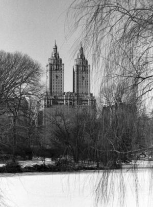 San Remo building from Central Park, New York City