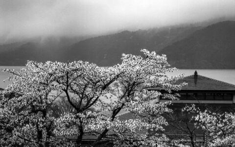 Near Lake Fuji, Japan