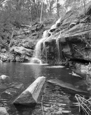 Sherwood Nature Reserve, NSW