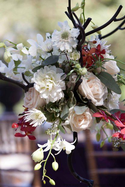 Creekside wedding (4 of 5)