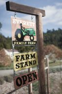 Everett Family Farm (13 of 21)