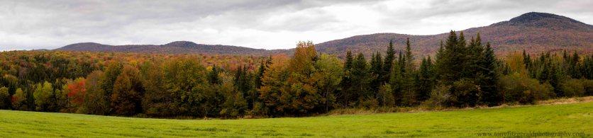 Vermont 2 (7 of 12)