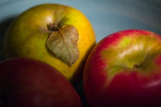 Apples from Billy Bob Orchards