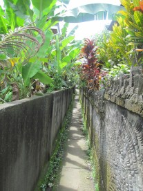 A sidewalk, or backway to the grocery store. It's almost like a  mini alley. Water irrigation systems follow these paths, feeding rice patties sequentially from the highlands to the sea.