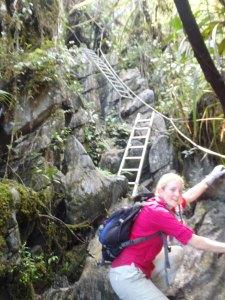 Pinnacles Ladders