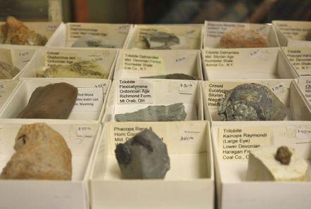 Rows of rocks are displayed Friday inside Peacock Rocks in Bridgman. (Tony Wittkowski | HP Staff)