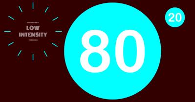 80 20 POLARISED TRAINING