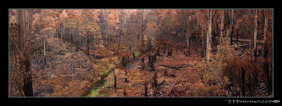 burnt-creek-i
