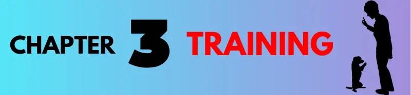 chapter 3 dog training