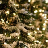 Holiday Survival Guide: Putting Up The Christmas Tree
