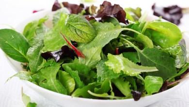 Photo of Mengenal Pasti Salad Memberi Keracunan Makanan
