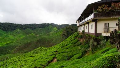 Photo of PRK Cameron Highlands Penuh Kejutan