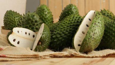Photo of Betul Ke Durian Belanda Mampu Mencegah Kanser?