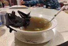 """Photo of Wabak Berbahaya Wuhan Dedah Tabiat Makan """"Pelik"""" Rakyat China"""