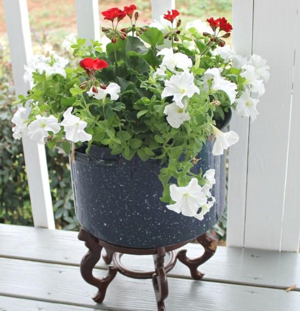 cooking pot made into a planter