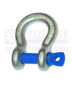 300 1111 Bow Shackle with Screw Collar Pin Grade S  6 1