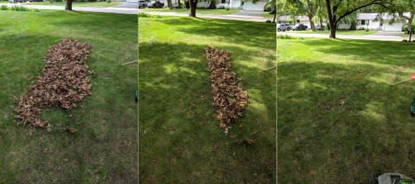Ego 21 inch mower bagging leaves