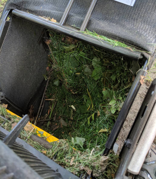 Dewalt 2x20V mower bagging grass