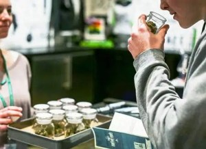 Dispensary Managers
