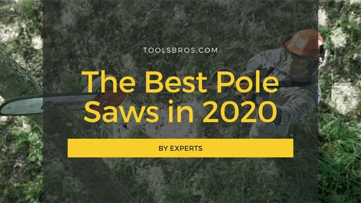 The Best Pole Saws in 2020 - By Experts