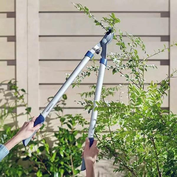 Tree Trimming Tools