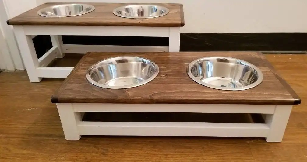 What is an elevated or raised dog bowl