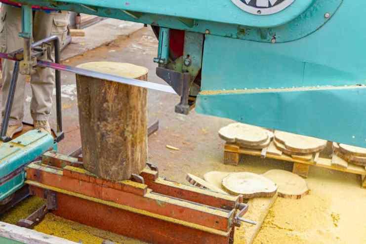 Band saw cutting small log at sawmill