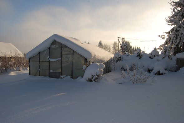 Welcome to Estonia : Kasvuhoone