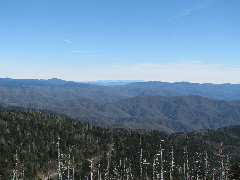 Looking east-northeast towards Mt Mitchell