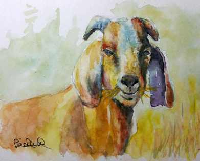 goat-watercolor-copy