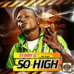 Terry G – So High