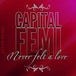 Capital F.E.M.I – Never Felt A Love