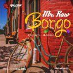 "Mr. Raw – ""Bongo"""