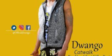 """DWANGO - """"Catwalk"""" « tooXclusive"""