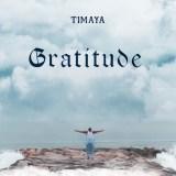 "[Album] Timaya – ""Gratitude"""