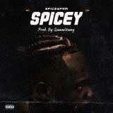 """Spiceyfam – """"Spicey"""""""