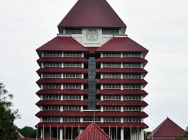 International University