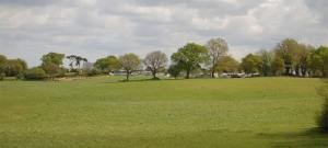 Top Farm Campsite Norfolk