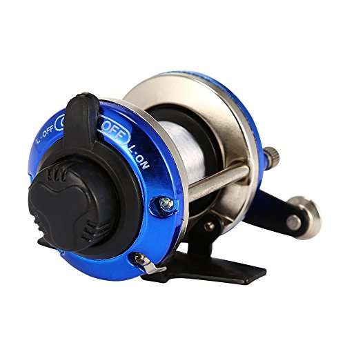 Isafish Release Rover Conventional Reel Inshore and Offshore Saltwater and Freshwater Reel Blue