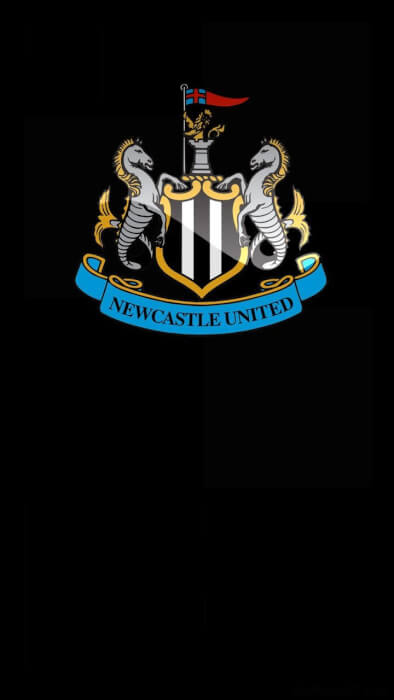 Ньюкасл Юнайтед рейтинг