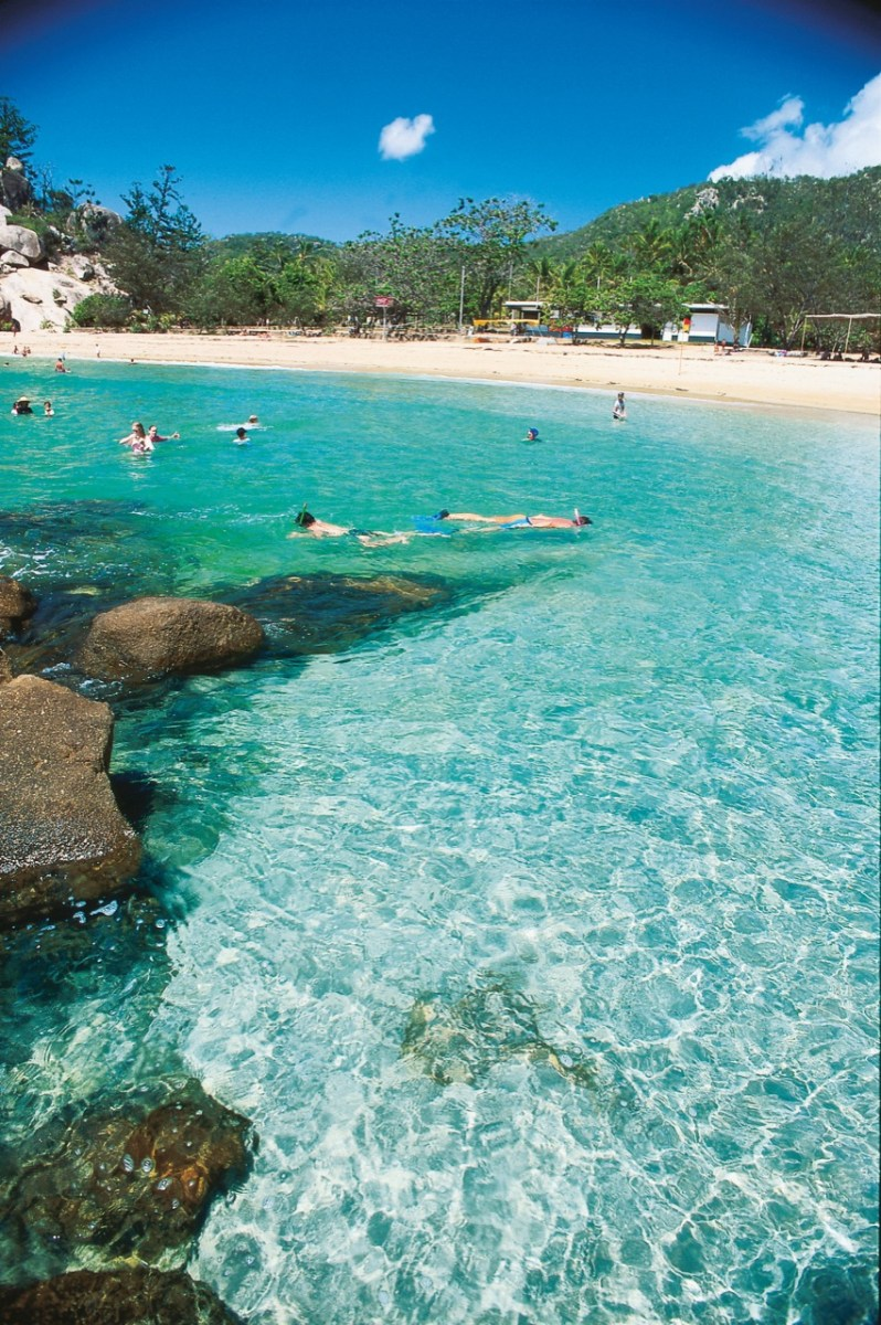 Snorkelling at Alma Bay - Magnetic Island