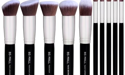 Top 10 Best Makeup Brush Set of 2017