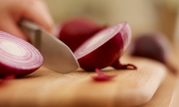 Top 10 Best Onion Choppers of 2016