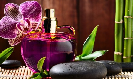 Top 10 Best Great Smelling Colognes for Women of 2017