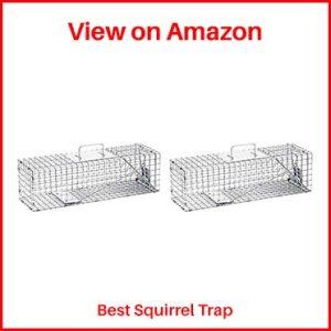 HAVAHART-Squirrel-Trap
