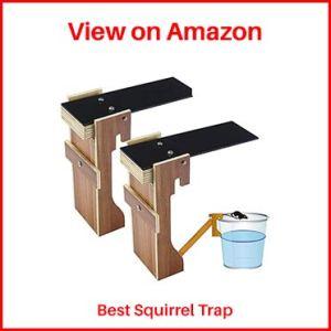thebestshop99-Squirrel-Trap