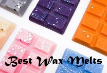 Photo of Best Wax Melt in 2020 Reviews/Buyers Guide