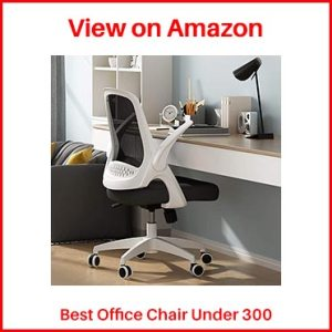 Best Chair Under 300