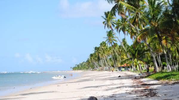 Ilha de Santo Aleixo e Praia dos Carneiros