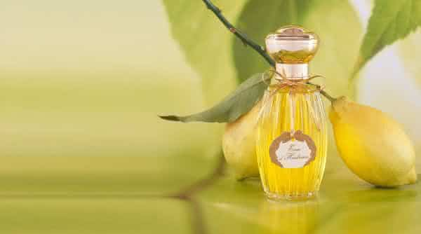 Annick Goutal Perfume Eau D Hadrien mais caro